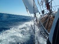 yh009-zwaan-sails-2